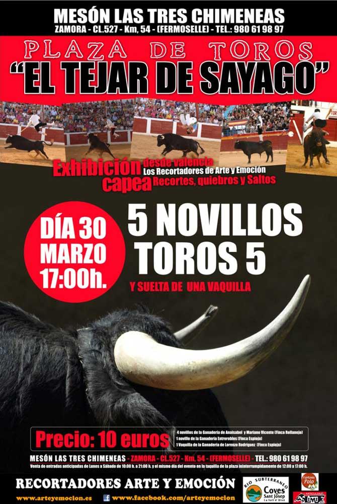 Arte y Emoción rendirá tributo a Goya en la apertura de la temporada 2013 en Formariz (Zamora)